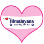 I Love My Himalayans (Multiple Cats) Acrylic Cut Outs