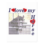 I love my Horse: Add your Photo or Text Postcard
