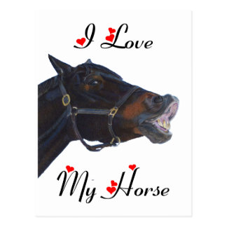 I Love My Horse! Funny Postcard