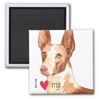 I Love my Ibizan Hound 2 Inch Square Magnet