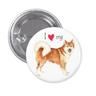 I Love my Icelandic Sheepdog Pinback Button