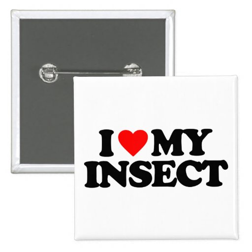 I LOVE MY INSECT PINBACK BUTTONS
