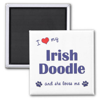 I Love My Irish Doodle (Female Dog) 2 Inch Square Magnet