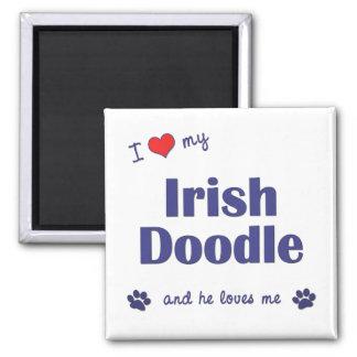 I Love My Irish Doodle (Male Dog) 2 Inch Square Magnet