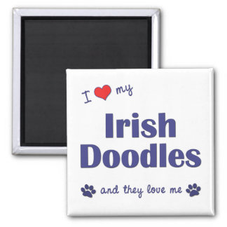 I Love My Irish Doodles (Multiple Dogs) 2 Inch Square Magnet