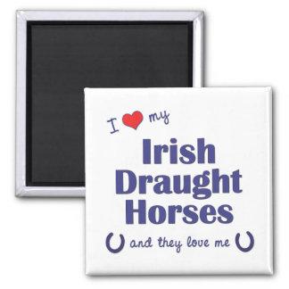 I Love My Irish Draught Horses (Multiple Horses) 2 Inch Square Magnet