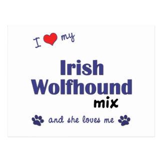 I Love My Irish Wolfhound Mix (Female Dog) Postcard