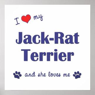 I Love My Jack-Rat Terrier (Female Dog) Poster