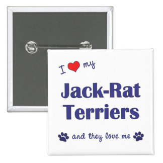 I Love My Jack-Rat Terriers (Multiple Dogs) 2 Inch Square Button