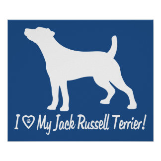 I Love My Jack Russell Smooth Coat in Silhouette Poster