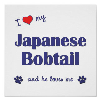 I Love My Japanese Bobtail (Male Cat) Print