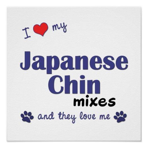 I Love My Japanese Chin Mixes (Multi Dogs) Poster