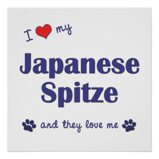 I Love My Japanese Spitze (Multiple Dogs) Posters