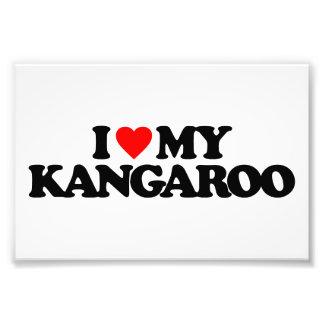 I LOVE MY KANGAROO PHOTO