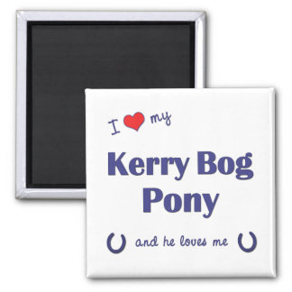 I Love My Kerry Bog Pony (Male Pony) 2 Inch Square Magnet