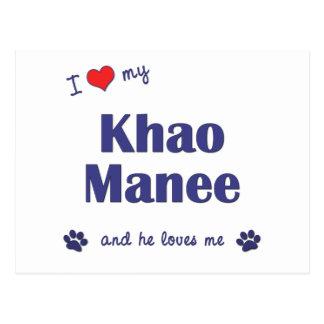 I Love My Khao Manee (Male Cat) Postcard