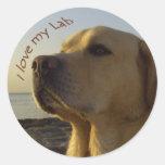 I love my Lab Round Sticker
