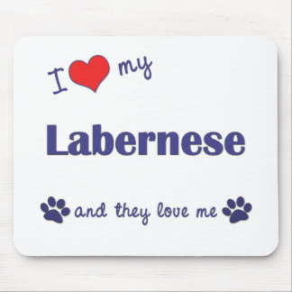 I Love My Labernese (Multiple Dogs) Mouse Pad