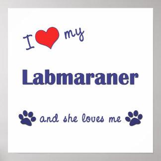 I Love My Labmaraner (Female Dog) Poster