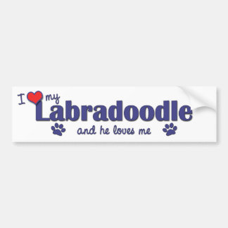 I Love My Labradoodle (Male Dog) Bumper Sticker