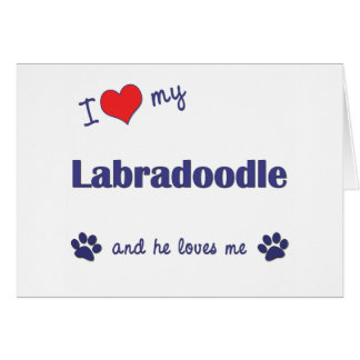 I Love My Labradoodle (Male Dog) Card