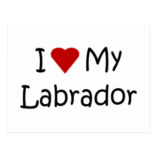 I Love My Labrador Dog Breed Lover Gifts Postcards