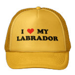 I Love My Labrador Mesh Hat