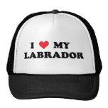 I Love My Labrador Mesh Hats