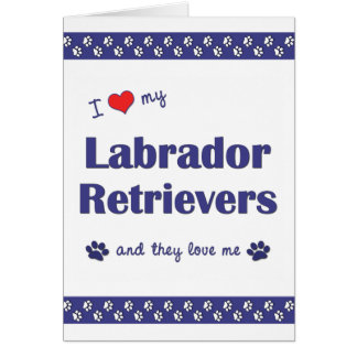 I Love My Labrador Retrievers (Multiple Dogs) Card