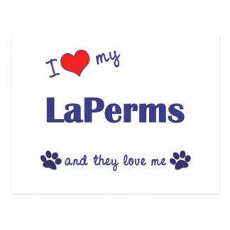 I Love My LaPerms (Multiple Cats) Postcard