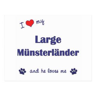 I Love My Large Munsterlander (Male Dog) Postcard