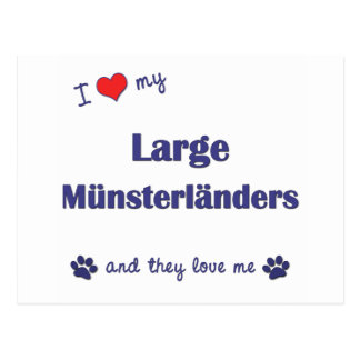 I Love My Large Munsterlanders (Multiple Dogs) Postcard