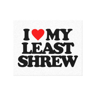 I LOVE MY LEAST SHREW STRETCHED CANVAS PRINT