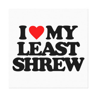 I LOVE MY LEAST SHREW GALLERY WRAPPED CANVAS