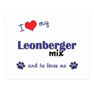 I Love My Leonberger Mix (Male Dog) Postcard