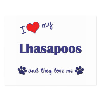 I Love My Lhasapoos (Multiple Dogs) Postcard