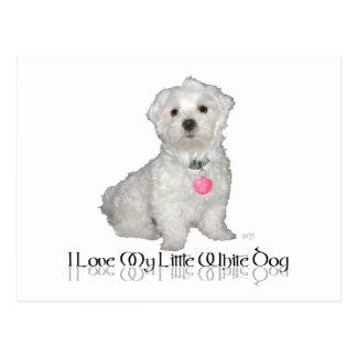 I Love My Little White Dog - Maltese ! Postcard