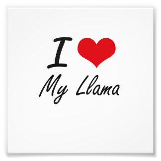 I Love My Llama Photo Print