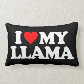 When Should I Throw Away My Pillow : Llama Pillows, Llama Throw Pillows
