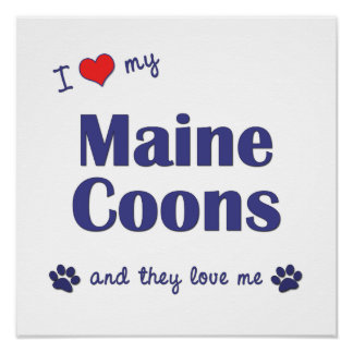 I Love My Maine Coons Multiple Cats Print