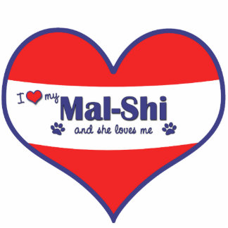 I Love My Mal-Shi (Female Dog) Cutout