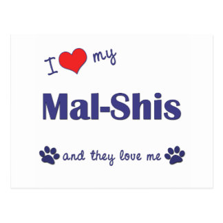 I Love My Mal-Shis (Multiple Dogs) Postcard