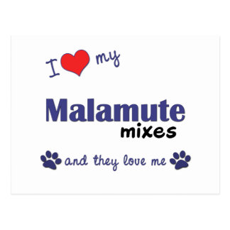 I Love My Malamute Mixes (Multiple Dogs) Postcard