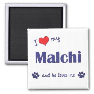 I Love My Malchi (Male Dog) Magnet