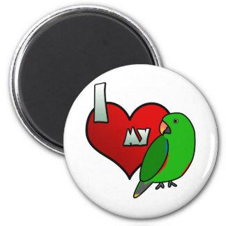 I Love my Male Vosmaeri Eclectus Magnet