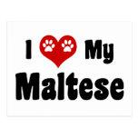 I Love My Maltese Post Cards