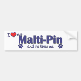 I Love My Malti-Pin (Male Dog) Bumper Stickers