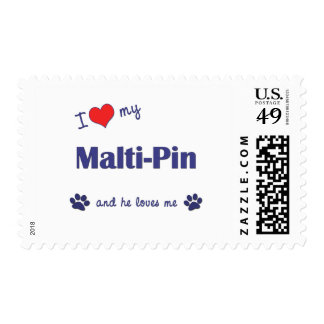 I Love My Malti-Pin (Male Dog) Stamp