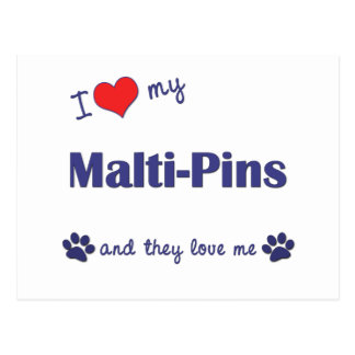 I Love My Malti-Pins (Multiple Dogs) Postcard