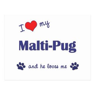 I Love My Malti-Pug (Male Dog) Postcard